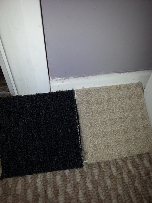 Grey walls and black carpet madness for Colours that go with grey carpet