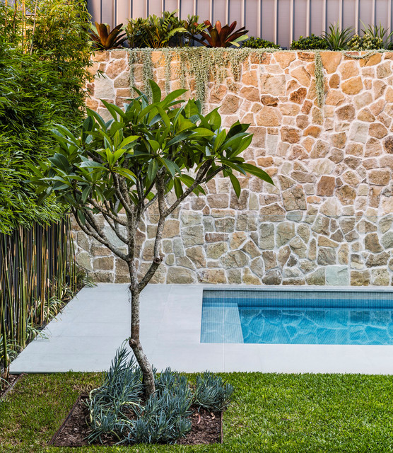 Inspiration for a modern pool in Sydney.