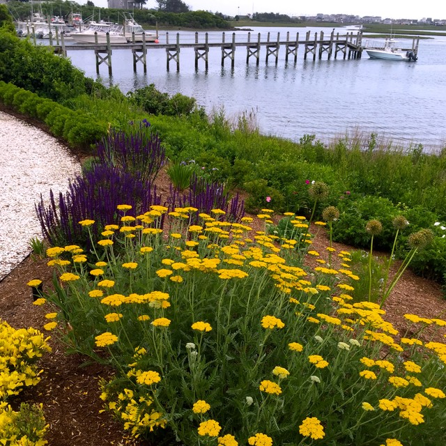 Seaside garden in rhode island providence by julia for Landscape design ri
