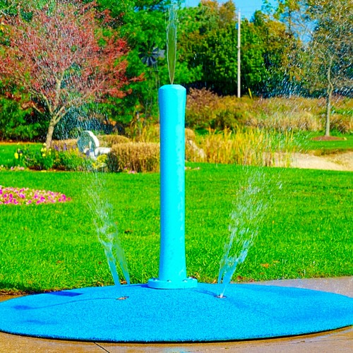 Diy Splash Pad For Dogs: 6 Ways To Stay Cool Without A Traditional Swimming Pool