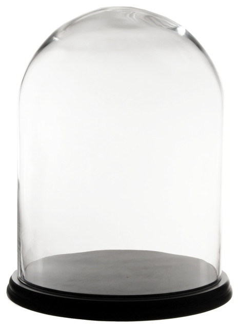 "Glass Cloche Dome Bell Jar With Black Wood Base, 16.5""x13"""