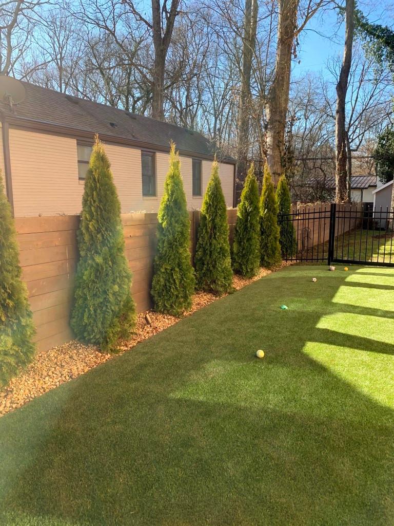 Fence row planting