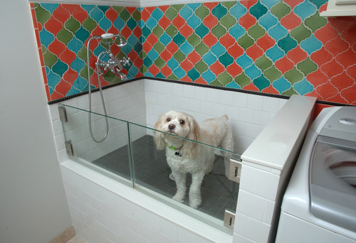 8 tips for installing a dog washing station moroccan inspired laundry room eden prairie solutioingenieria Image collections