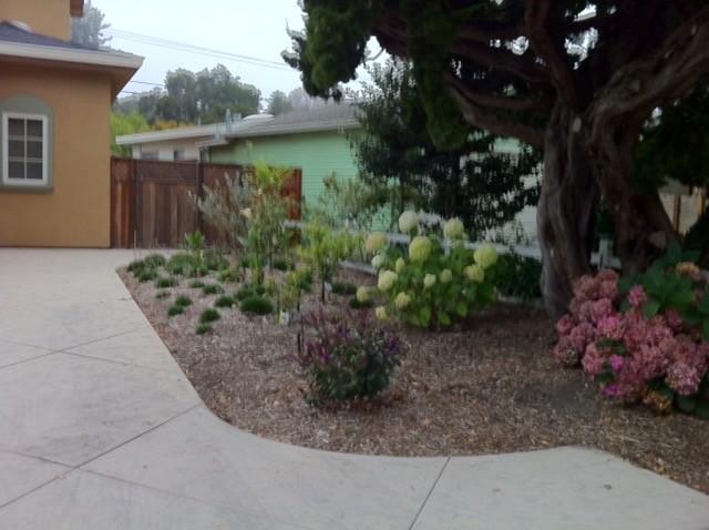 Capitola Beach Village Blooms