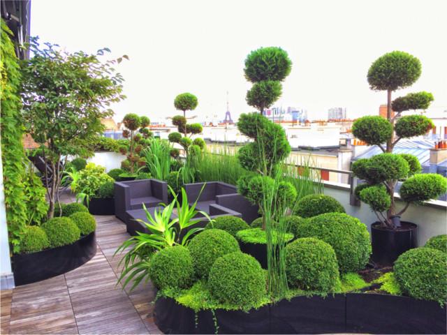 Terrasse parisienne am nagement choix des v g taux for Eclairage balcon terrasse