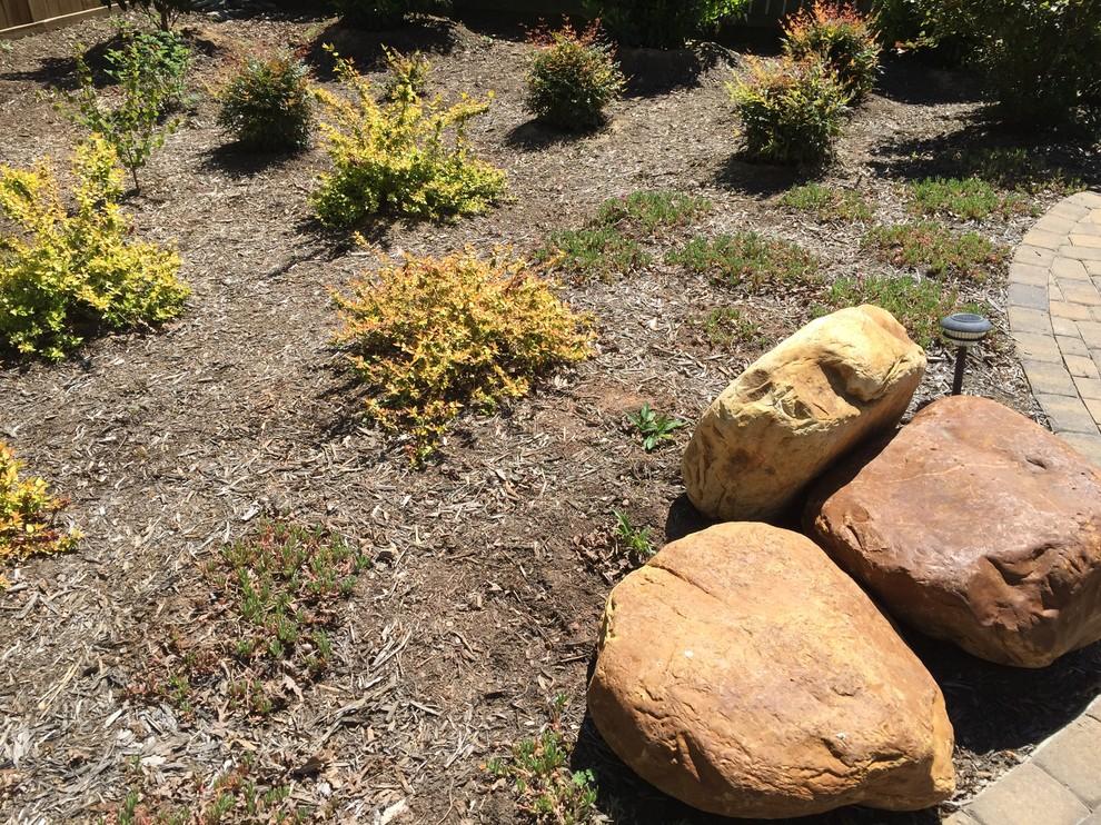 Dilworth Fusion Garden
