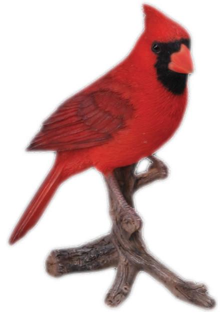 Cardinal Bird Garden Statue 8 25 Quot Contemporary Garden