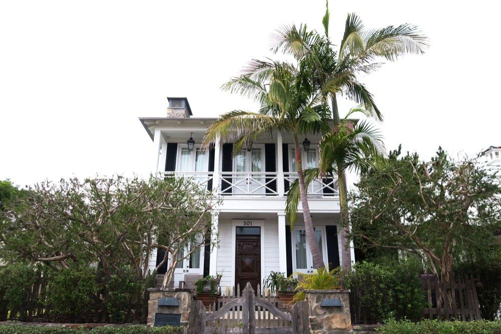West Palm Poppy