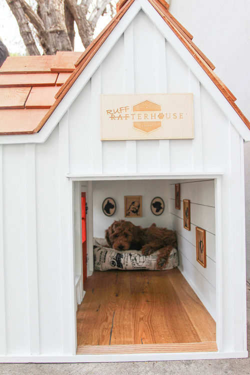 The Dog House - Photo by Rafterhouse