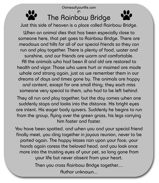 Chimes Of Your Life Dog Rainbow Bridge Poem Pet Memorial Wind Chime