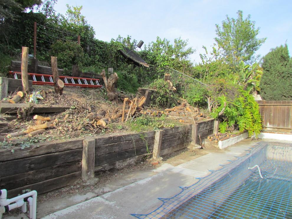 In Progress: Backyard Renovation