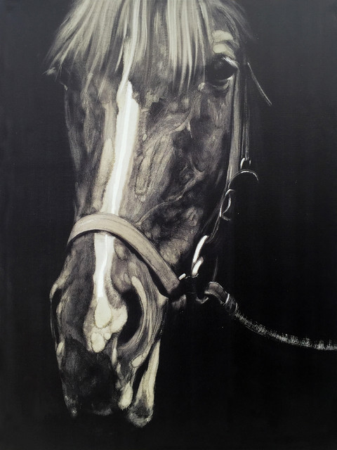 Wall Decor Painting Horse in the Dark III