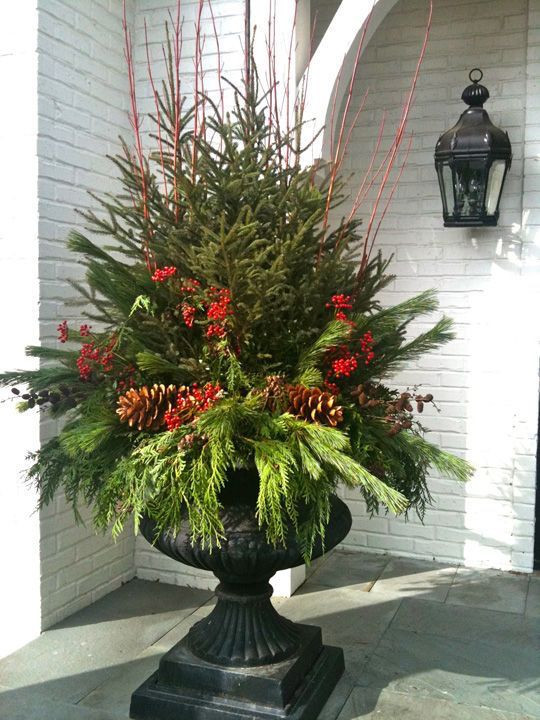 Christmas Potted Gardens