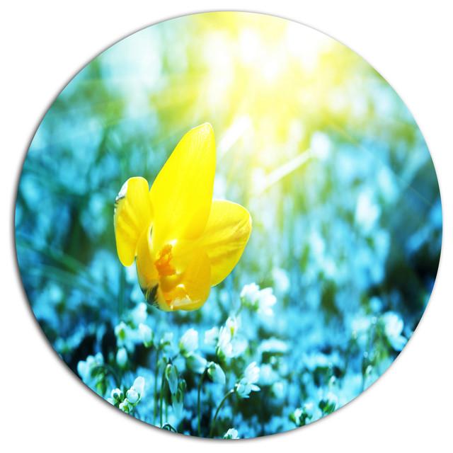 Design Art USA - Beautiful Yellow Spring Flower, Flower Large Disc ...