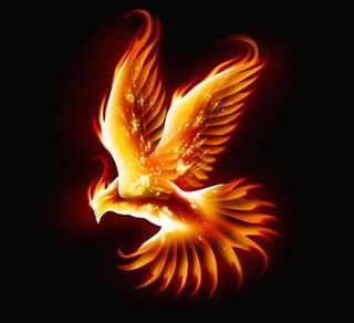 Phoenix - Peel and Stick Removable Graphic - Contemporary - Wall Decals - by Wallmonkeys