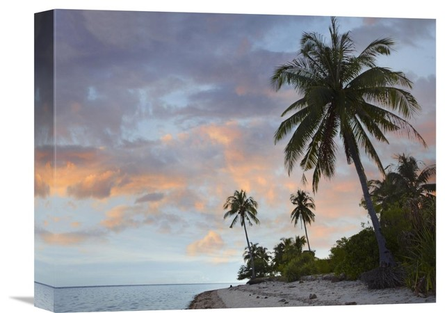 """Global Gallery """"Coconut Palm Trees, Pamilacan Island"""