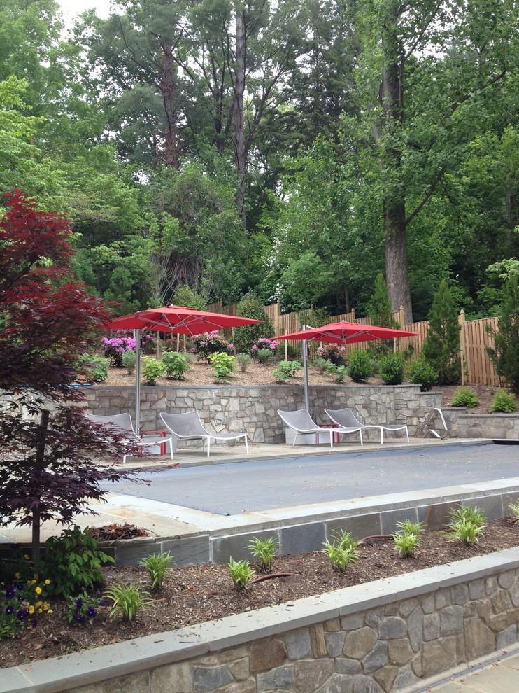 Arlington Backyard Refresh