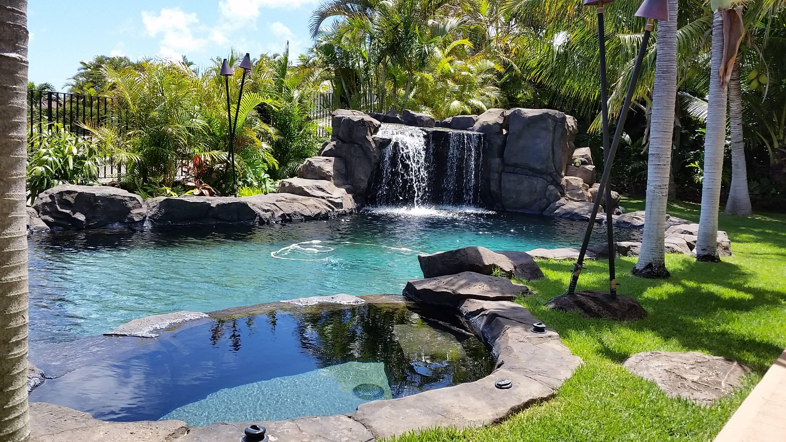 Natural Tropical Designs
