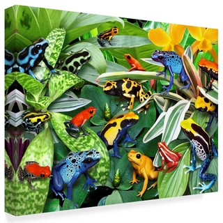 """""""Dart Frogs"""" by Howard Robinson, Canvas Art - Tropical - Prints And Posters - by ShopLadder"""
