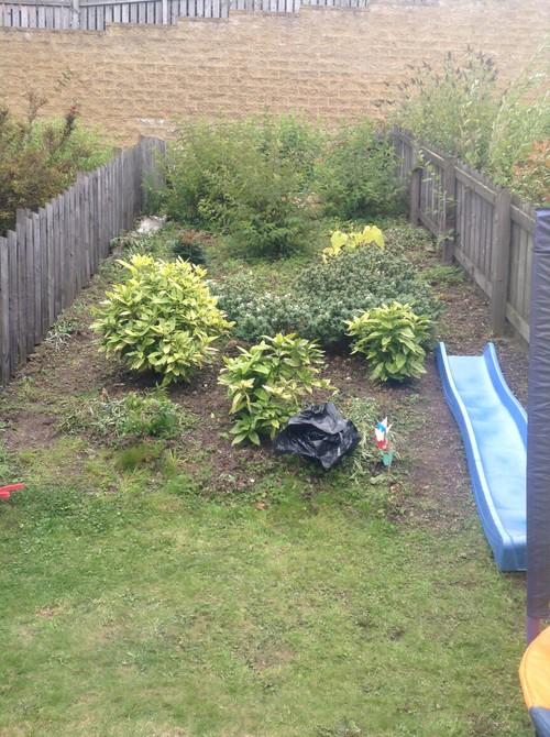 Hilly Garden Help