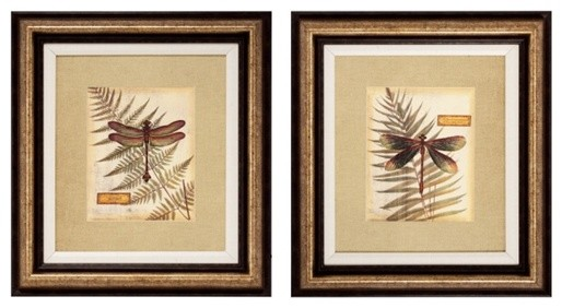 Traditional Wall Art royal dragonfly framed wall art - traditional - prints and posters