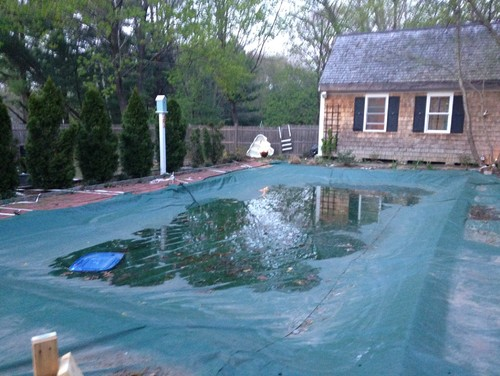 Should We Fill In The Pool
