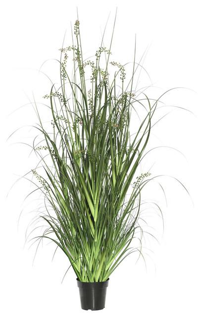 "Sheep's Grass in Pot, Green, 48"""