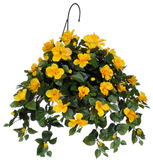 Create A Stunning Look With Hanging Basket Plants