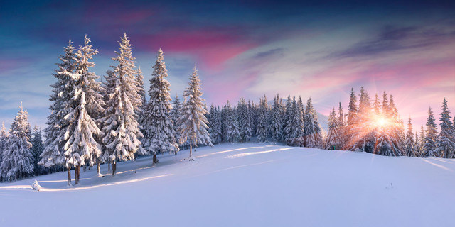 "Winter Wall Art panorama of winter sunrise"" aluminum wall art, 10x20"