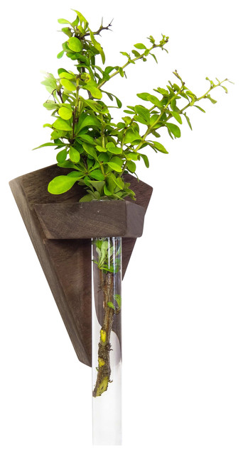 Walnut Bud Vase Wall Mounted Contemporary Plate Stands And