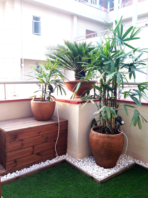 6 Mistakes To Avoid In Your Balcony Garden