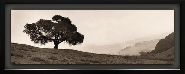 """""""black Oak Tree"""" By Alan Blaustein, With Single Mat Float, Black, 15""""x39""""."""