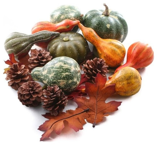 Assorted Autumn Gourds And More Set.