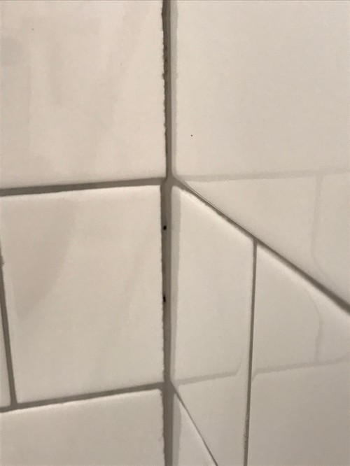 Bad Tile Job Help Grout Dark In Certain Areas Chipped