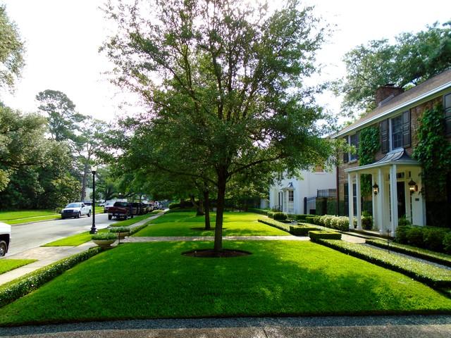 Home design - traditional home design idea in Houston