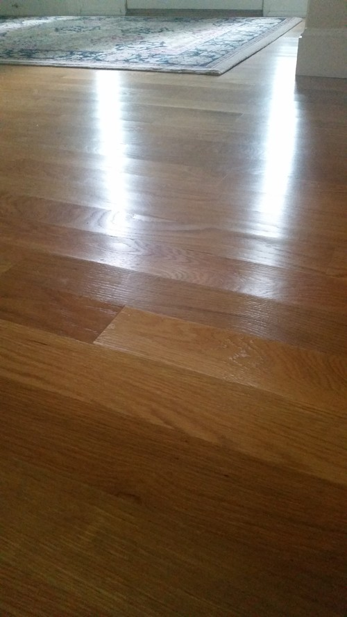 - Cupped Hardwood Floors