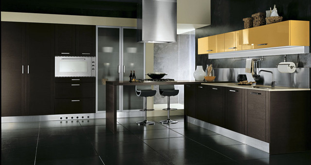 San diego contemporary kitchen design and cabinets for Italian kitchen cabinets
