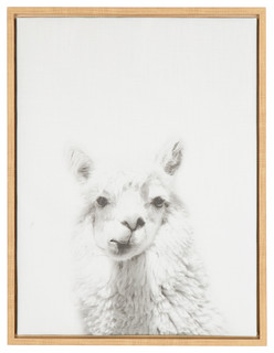 Sylvie Alpaca Natural Framed Canvas Wall Art By Simon Te