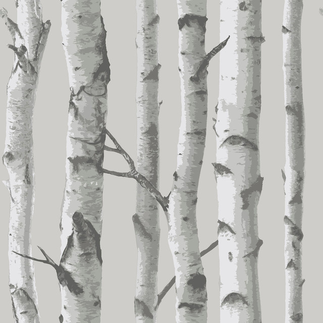 Mountain Birch Grey Peel And Stick Wallpaper Bolt.