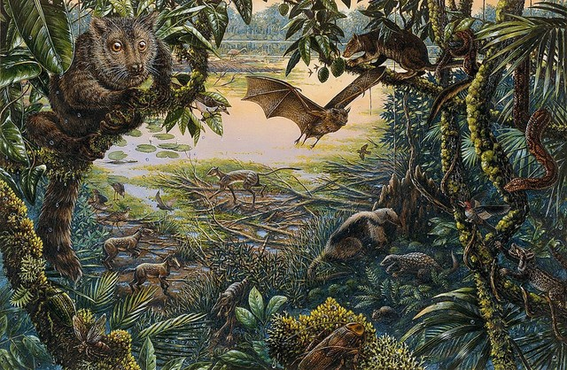 Rain forest animals wallpaper wall mural self adhesive for Animal wall mural