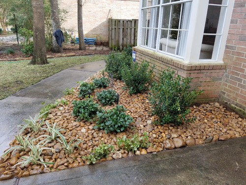 New bullrock flower bed with low maintenance plants for Low maintenance flower bed plans