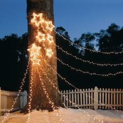 Фотоохота: Новогодняя подсветка загородного дома и сада — 36 идей