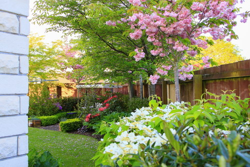 What are your sensory garden ideas?