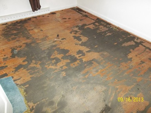 How to remove carpet padding stuck concrete floor www for Removing concrete floor