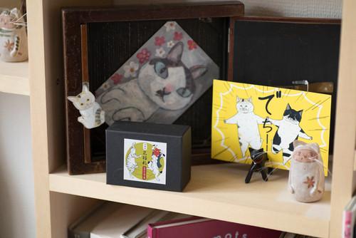 【Houzz】猫と人の幸せな暮らし:「福を招く猫」千葉ちゃんと「猫と建築社」の日常 7番目の画像