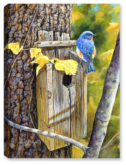 Old Homestead Bluebird Paintings By Canvas Art Plus
