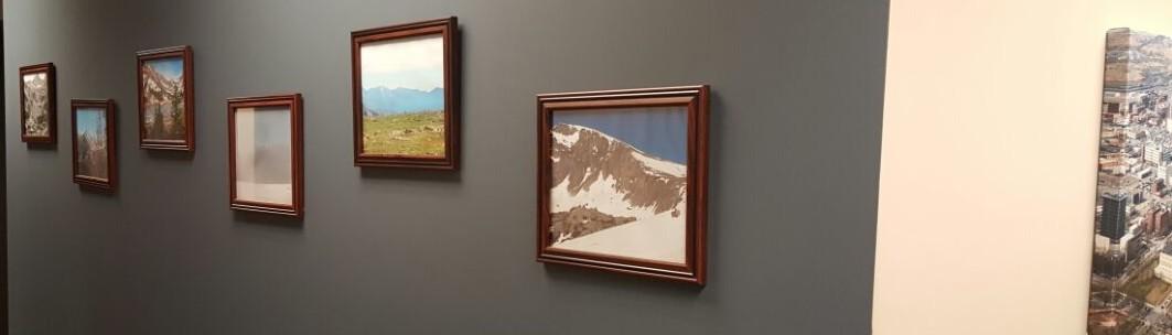 Petersen Interior Painting   Omaha, NE, US 68135