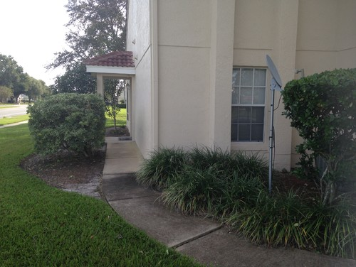 Landscaping The Side Of My House : Need help with landscaping my friend s front side of the house