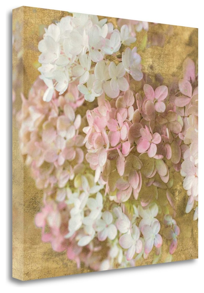 Global Gallery Sue Schlabach Belle Fleur I Giclee Stretched Canvas Artwork 20 x 24