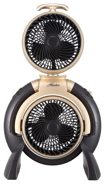 Hunter 3 Speed Dual Fan, Black, Gold Accent.